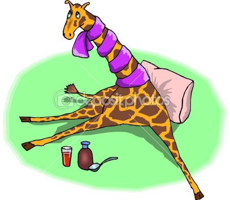 Sick Giraffe