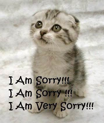 I-m-sorry-lilyz-11952970-357-422